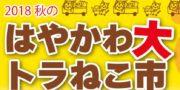 10/28秋の大トラねこ市開催!
